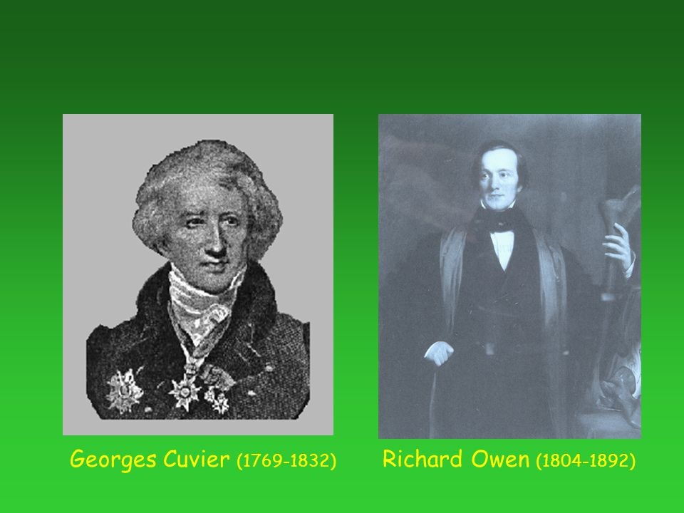 Georges Cuvier (1769-1832) Richard Owen (1804-1892)