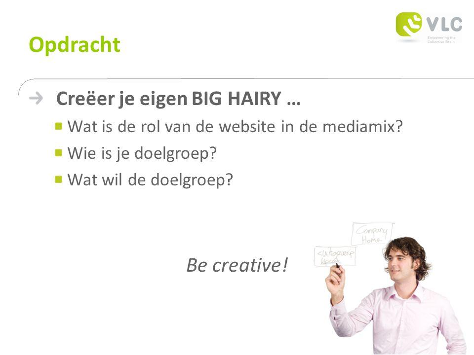 Opdracht Creëer je eigen BIG HAIRY … Wat is de rol van de website in de mediamix.