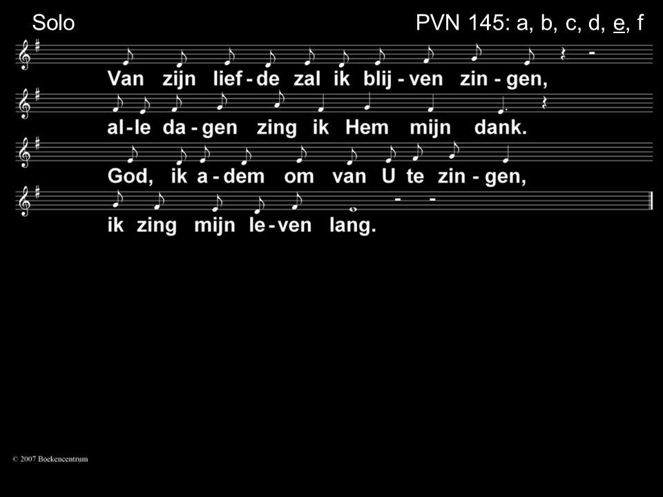 SoloPVN 145: a, b, c, d, e, f