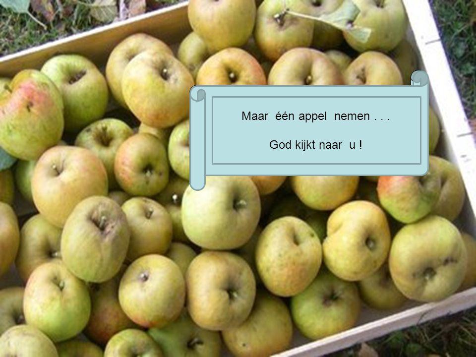 N en prenez qu une seule, Dieu vous surveille ! Maar één appel nemen... God kijkt naar u !