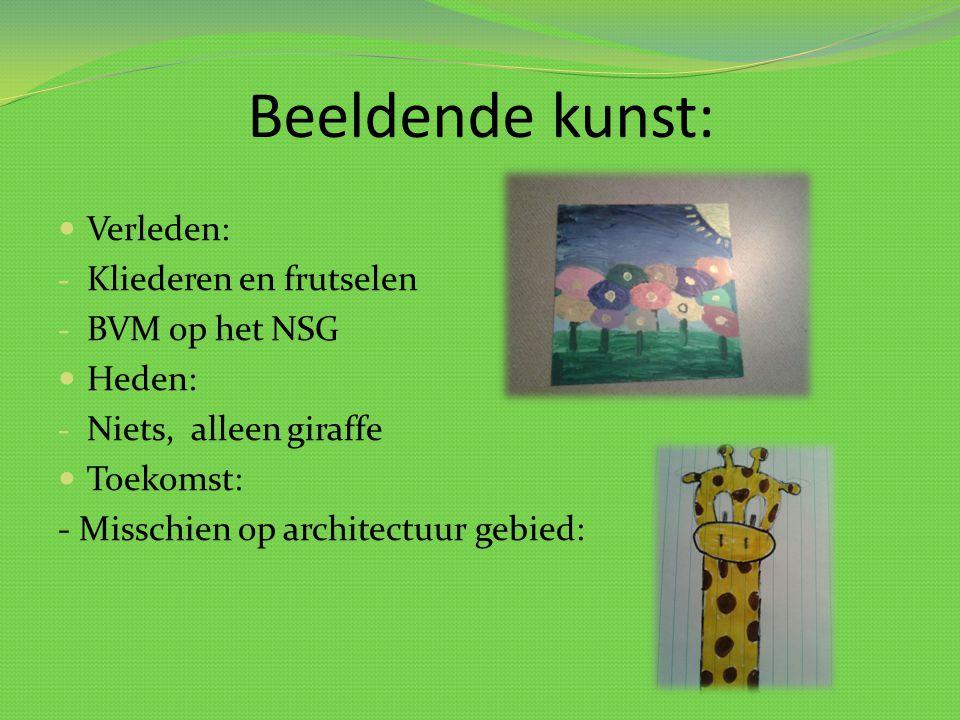Beeldende kunst: Verleden: - Kliederen en frutselen - BVM op het NSG Heden: - Niets, alleen giraffe Toekomst: - Misschien op architectuur gebied: