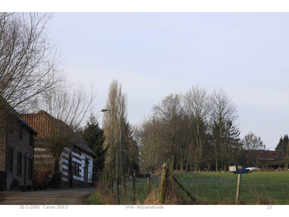 4-2-2009 Canon 350DEuropese – Bison Cottessen 12