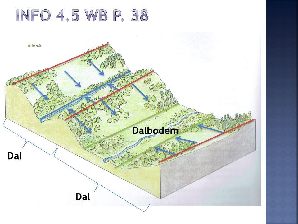 Dalbodem Dal