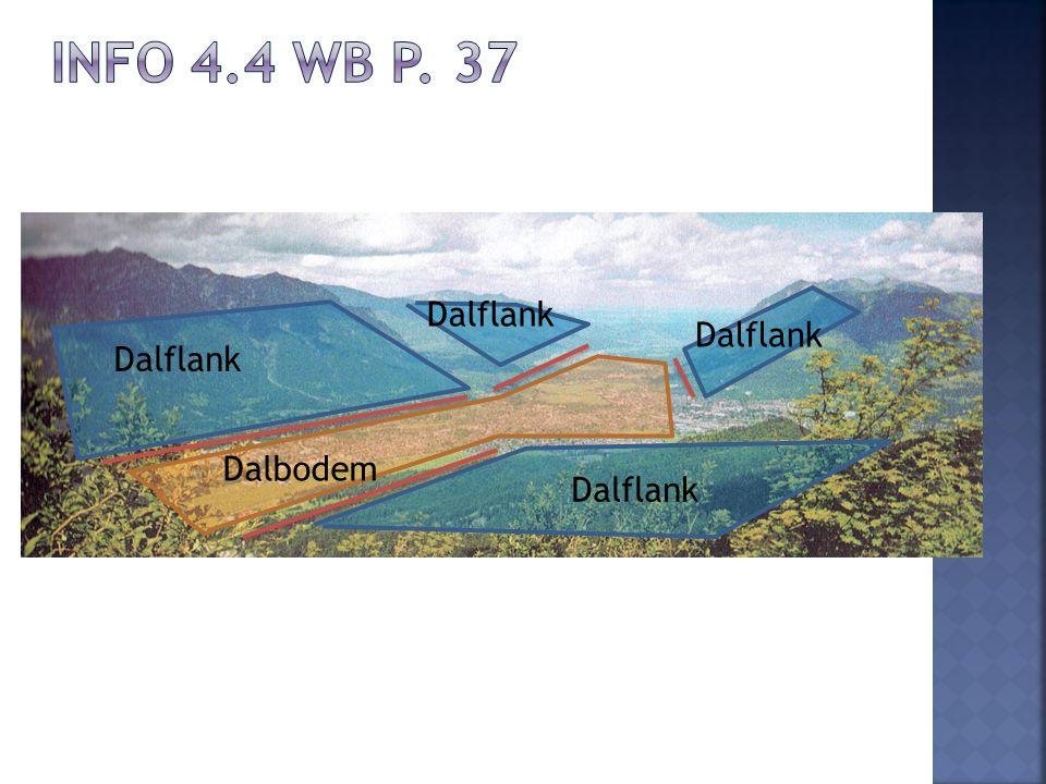 Dalflank Dalbodem