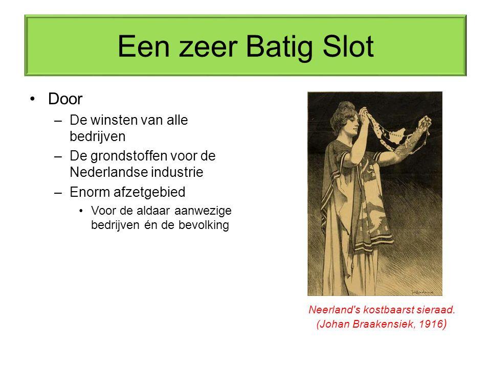 Een zeer Batig Slot Door –De winsten van alle bedrijven –De grondstoffen voor de Nederlandse industrie –Enorm afzetgebied Voor de aldaar aanwezige bed