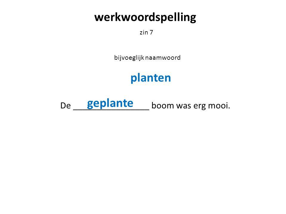 werkwoordspelling zin 7 bijvoeglijk naamwoord De ________________ boom was erg mooi.