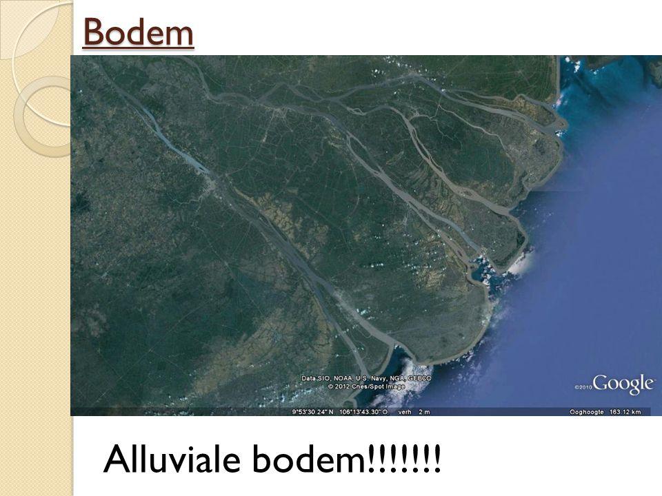 Bodem Alluviale bodem!!!!!!!