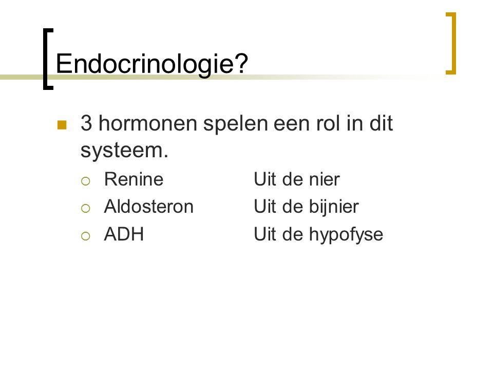 Endocrinologie? 3 hormonen spelen een rol in dit systeem.  Renine Uit de nier  Aldosteron Uit de bijnier  ADH Uit de hypofyse