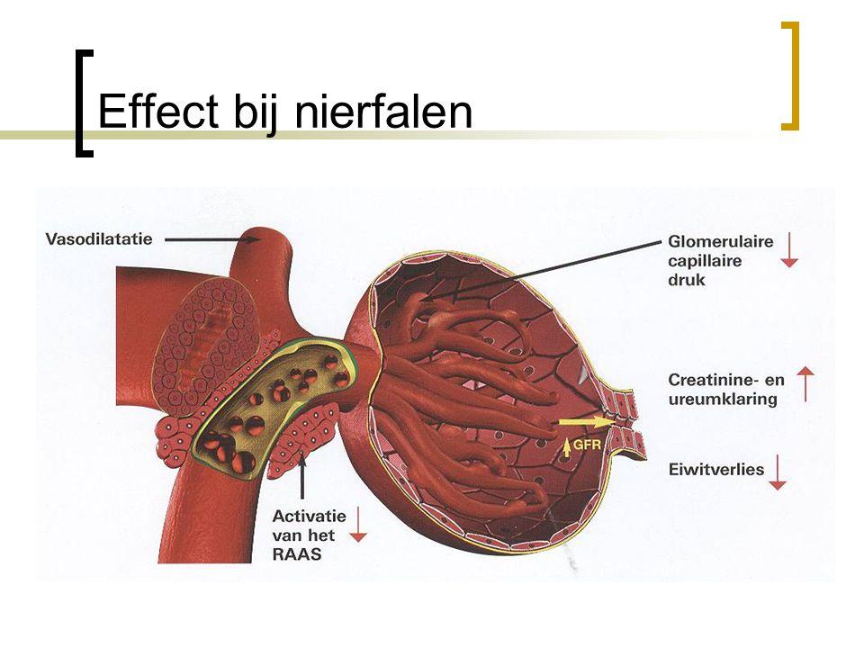 Effect bij nierfalen Vermindering van de bloeddruk Hierdoor betere GFR Hierdoor betere nierfunctie.