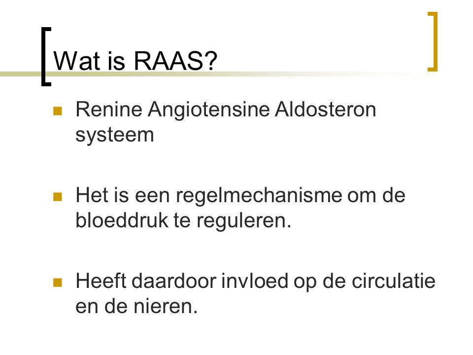 Wat is RAAS? Renine Angiotensine Aldosteron systeem Het is een regelmechanisme om de bloeddruk te reguleren. Heeft daardoor invloed op de circulatie e