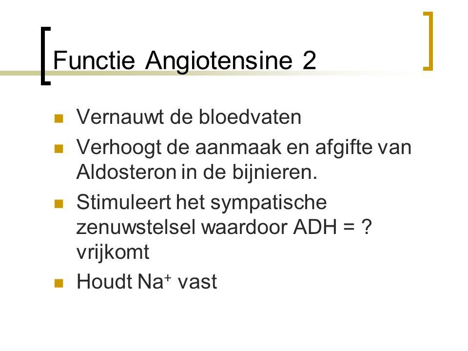 Functie Angiotensine 2 Vernauwt de bloedvaten Verhoogt de aanmaak en afgifte van Aldosteron in de bijnieren. Stimuleert het sympatische zenuwstelsel w