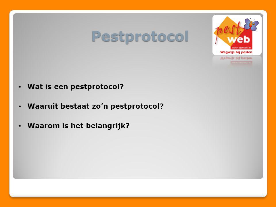 Pestprotocol Wat is een pestprotocol? Waaruit bestaat zo'n pestprotocol? Waarom is het belangrijk?