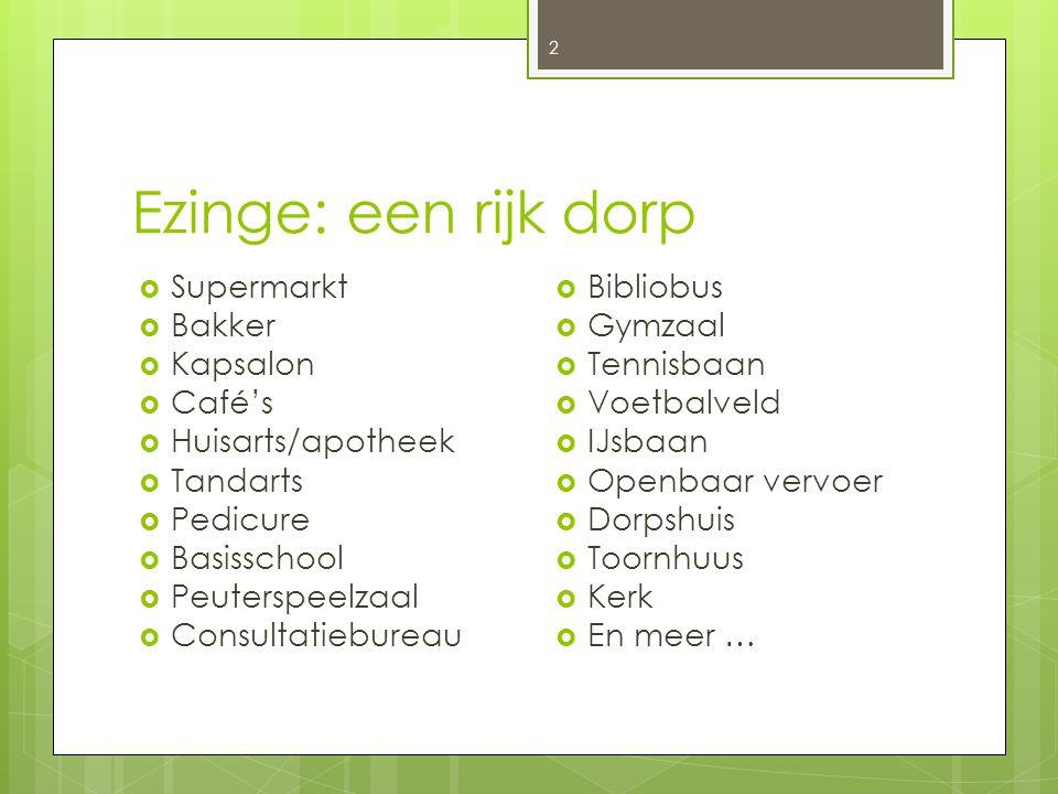 Ezinge: een rijk dorp 2  Supermarkt  Bakker  Kapsalon  Café's  Huisarts/apotheek  Tandarts  Pedicure  Basisschool  Peuterspeelzaal  Consulta
