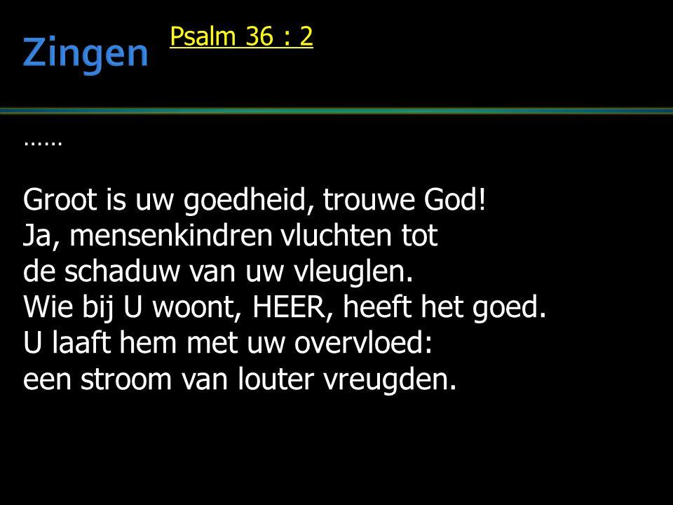 …… Groot is uw goedheid, trouwe God! Ja, mensenkindren vluchten tot de schaduw van uw vleuglen. Wie bij U woont, HEER, heeft het goed. U laaft hem met