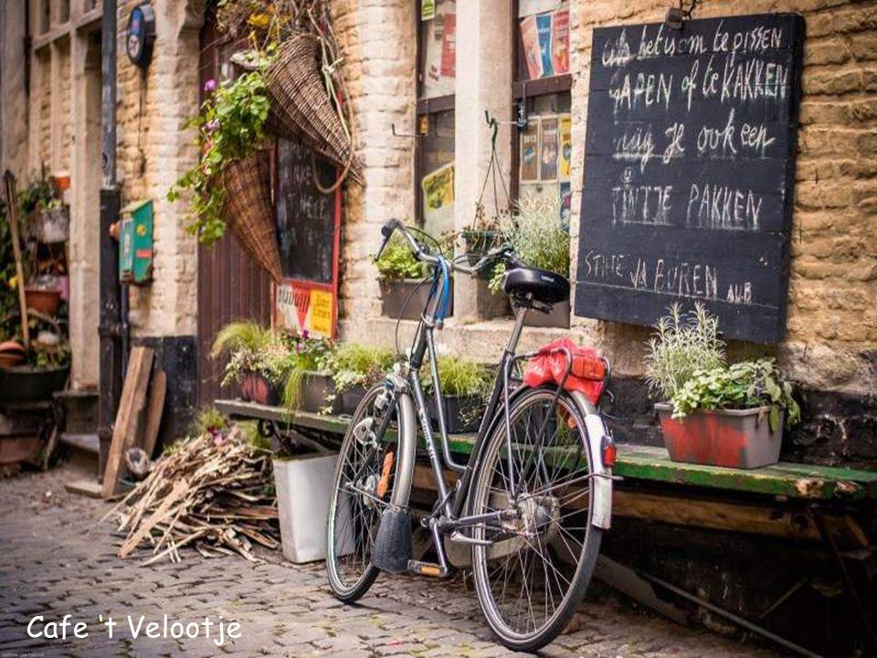 De Patroon Lieven De Vos Cafe 't Velootje