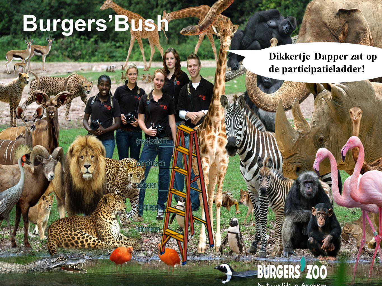 Dikkertje Dapper zat op de participatieladder! Burgers'Bush