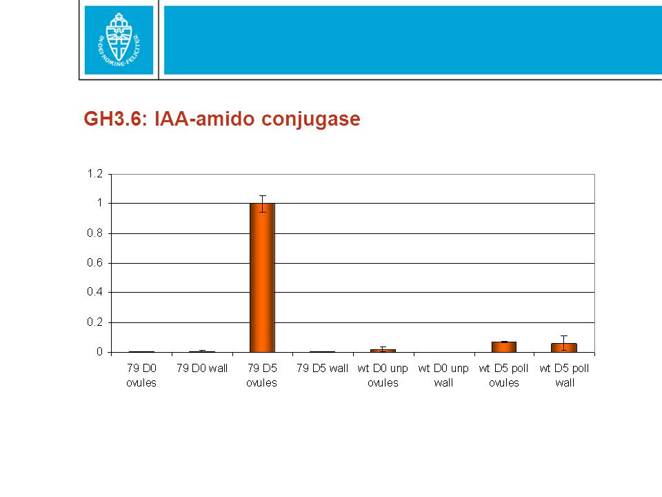 GH3.6: IAA-amido conjugase