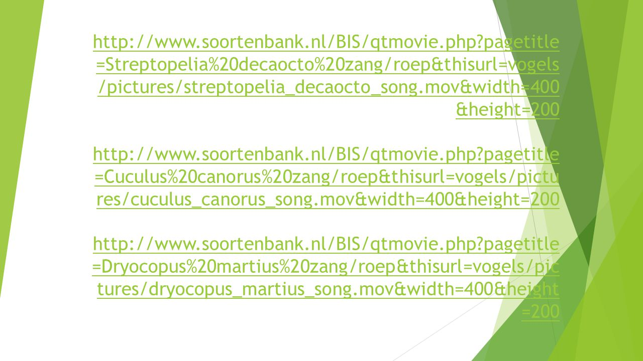 http://www.soortenbank.nl/BIS/qtmovie.php?pagetitle =Streptopelia%20decaocto%20zang/roep&thisurl=vogels /pictures/streptopelia_decaocto_song.mov&width