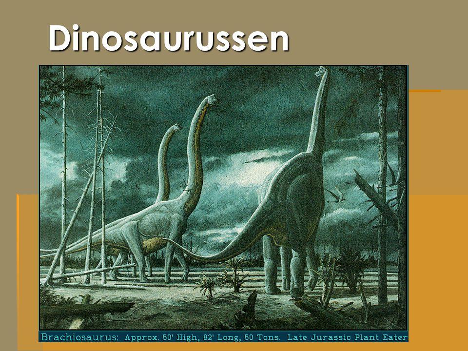 Wat is een dinosaurus.