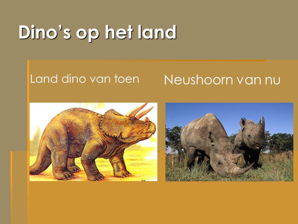 Dino's op het land Land dino van toen Neushoorn van nu