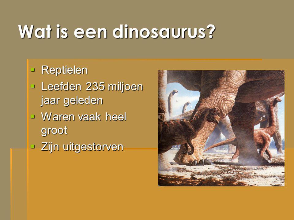 Wat is een dinosaurus?  Reptielen  Leefden 235 miljoen jaar geleden  Waren vaak heel groot  Zijn uitgestorven