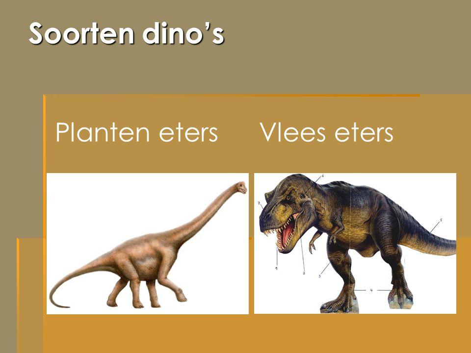 Soorten dino's Planten etersVlees eters