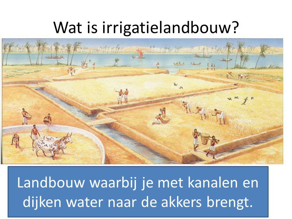 Wat is irrigatielandbouw? Landbouw waarbij je met kanalen en dijken water naar de akkers brengt.