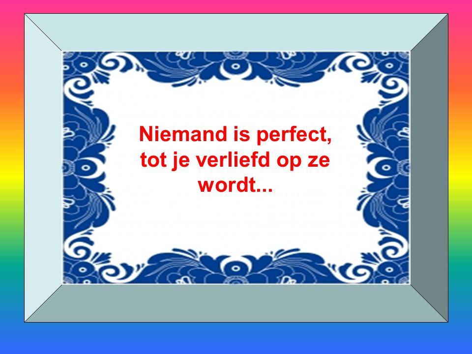 Niemand is perfect, tot je verliefd op ze wordt...