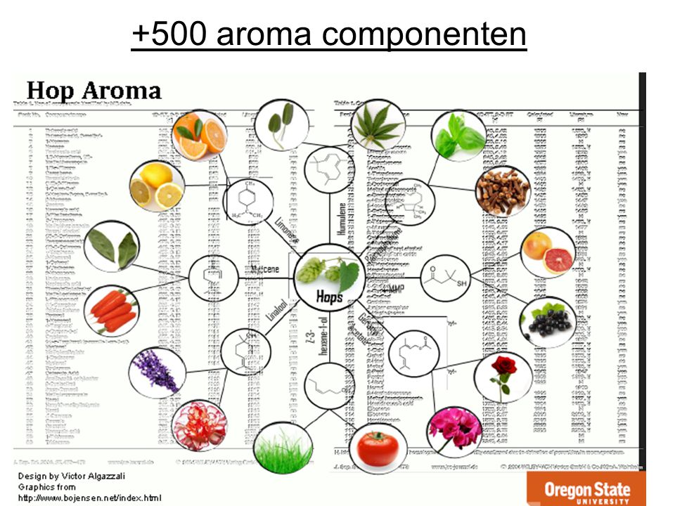 +500 aroma componenten