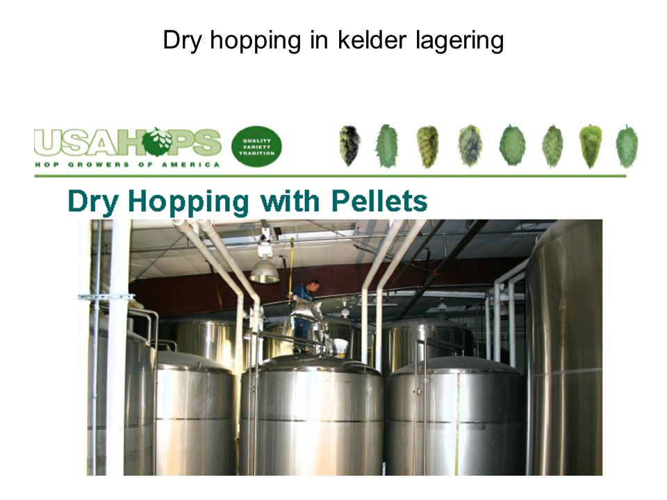 Dry hopping in kelder lagering