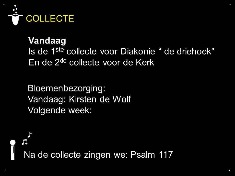 """.... COLLECTE Vandaag Is de 1 ste collecte voor Diakonie """" de driehoek"""" En de 2 de collecte voor de Kerk Bloemenbezorging: Vandaag: Kirsten de Wolf Vo"""