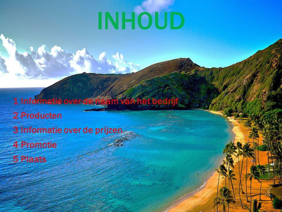 INHOUD 1 Informatie over de naam van het bedrijf 2 Producten 3 Informatie over de prijzen 4 Promotie 5 Plaats