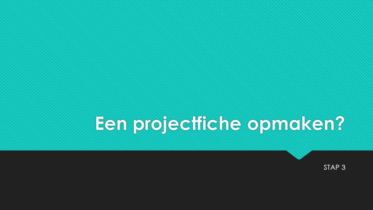 Een projectfiche opmaken? STAP 3