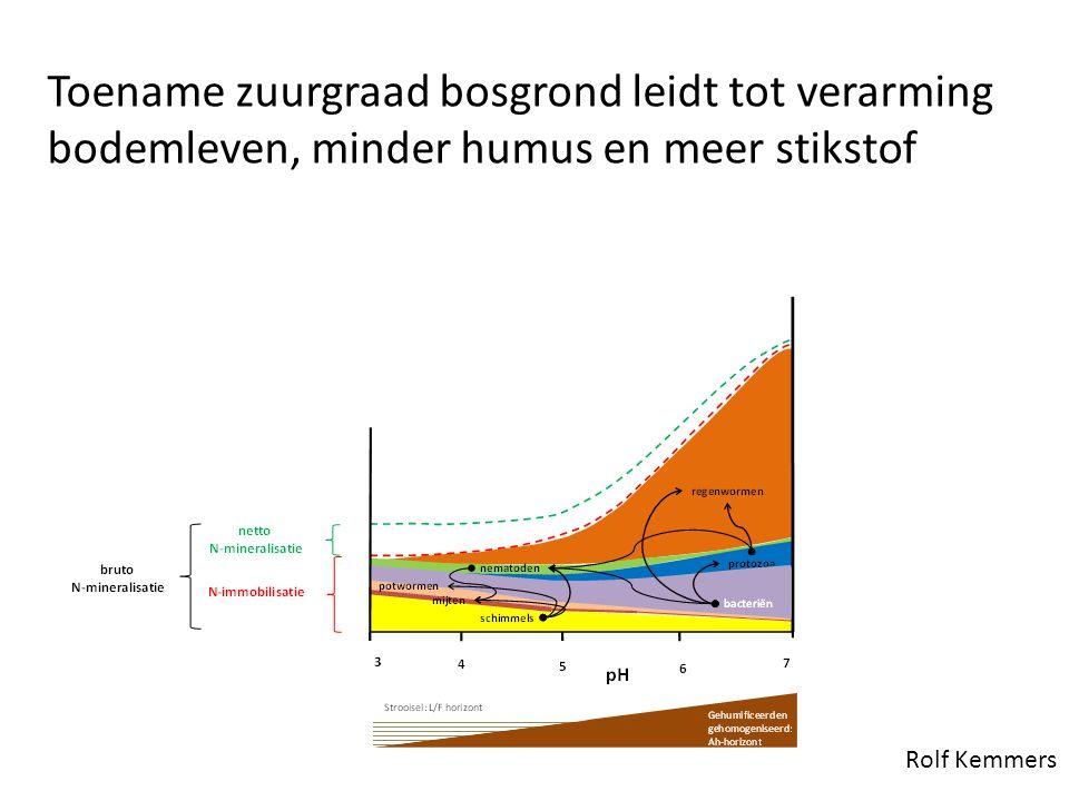 Toename zuurgraad bosgrond leidt tot verarming bodemleven, minder humus en meer stikstof Rolf Kemmers