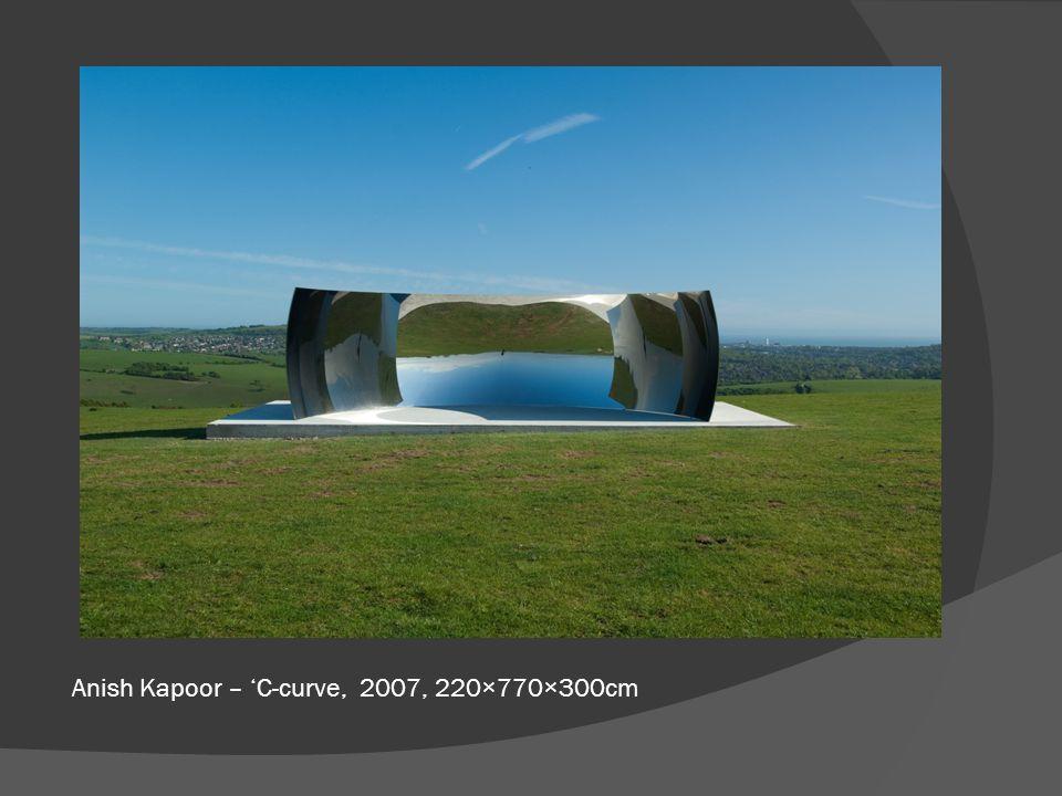 Anish Kapoor – 'C-curve, 2007, 220×770×300cm