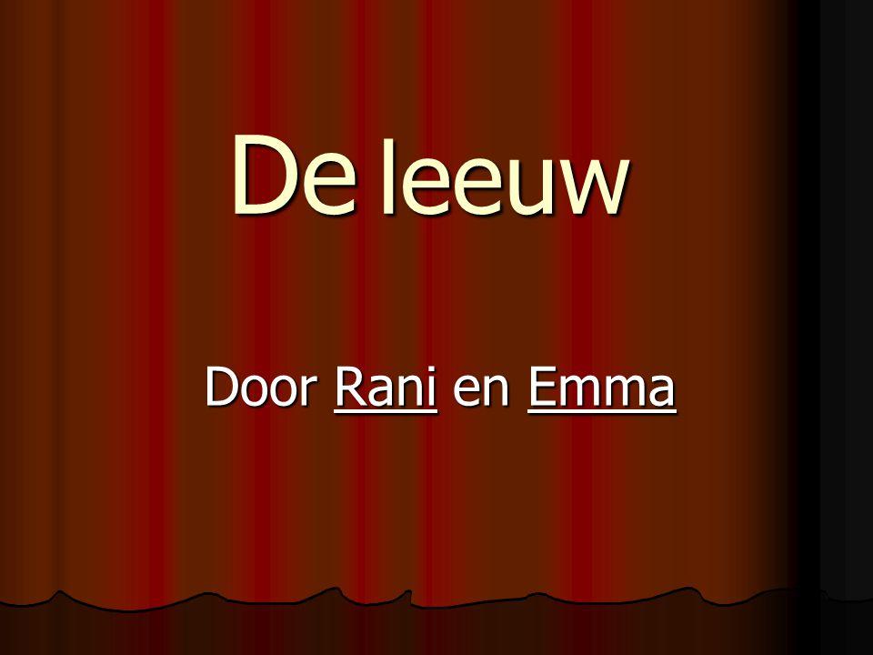 De leeuw Door Rani en Emma