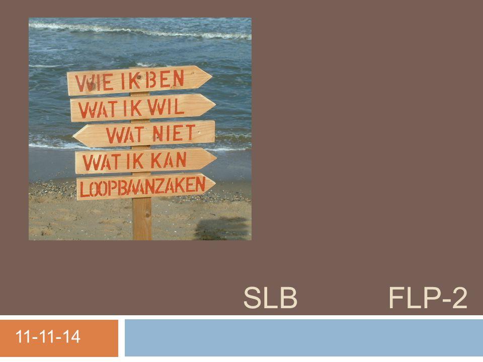 SLB FLP-2 11-11-14