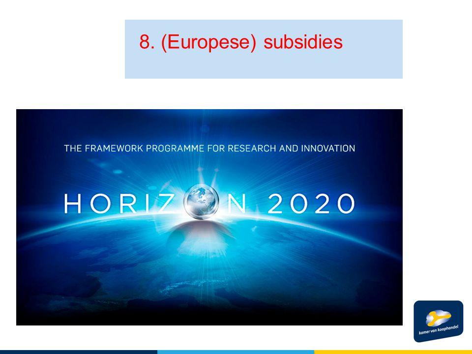 8. (Europese) subsidies