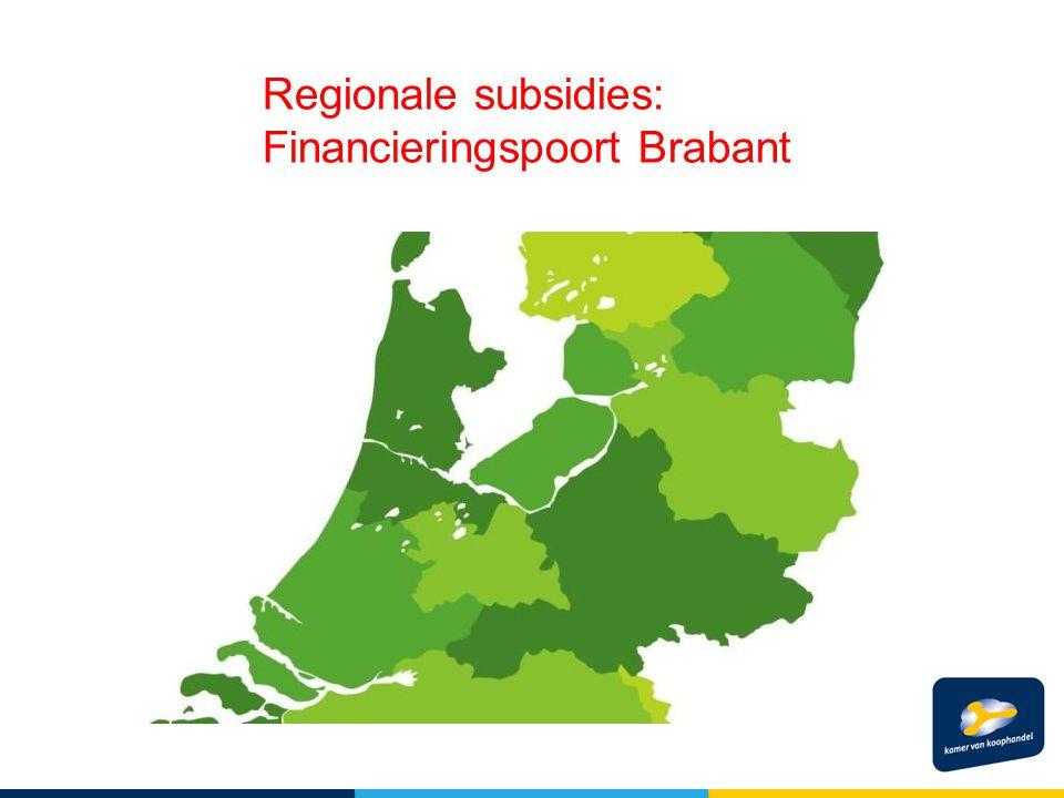 Regionale subsidies: Financieringspoort Brabant