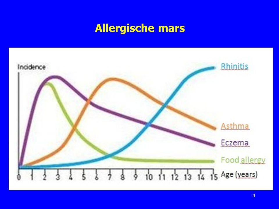 IgE-gemedieerde allergie Inhalatieallergenen hebben in het slijmvlies van de neus en/of de luchtwegen IgE-antilichamen doen ontstaan; er is sensibilisatie opgetreden.