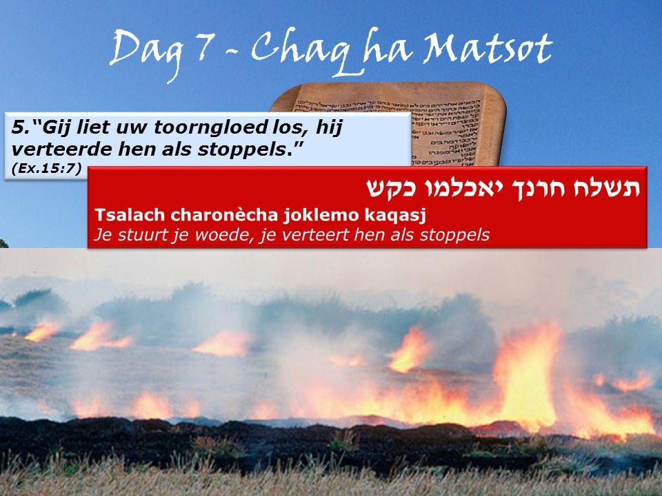 Dag 7 - Chaq ha Matsot 5. Gij liet uw toorngloed los, hij verteerde hen als stoppels. (Ex.15:7) 5. Gij liet uw toorngloed los, hij verteerde hen als stoppels. (Ex.15:7)