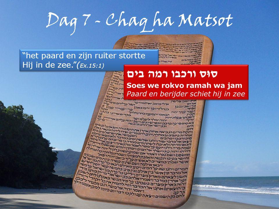 Dag 7 - Chaq ha Matsot het paard en zijn ruiter stortte Hij in de zee. ( Ex.15:1)