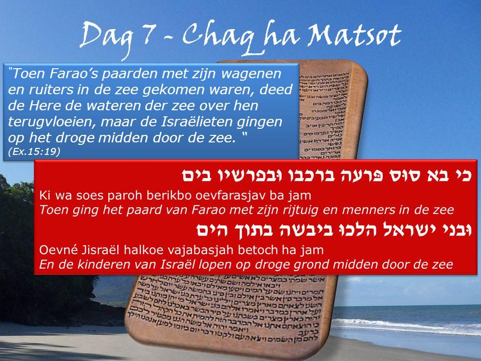 Dag 7 - Chaq ha Matsot Toen Farao's paarden met zijn wagenen en ruiters in de zee gekomen waren, deed de Here de wateren der zee over hen terugvloeien, maar de Israëlieten gingen op het droge midden door de zee.