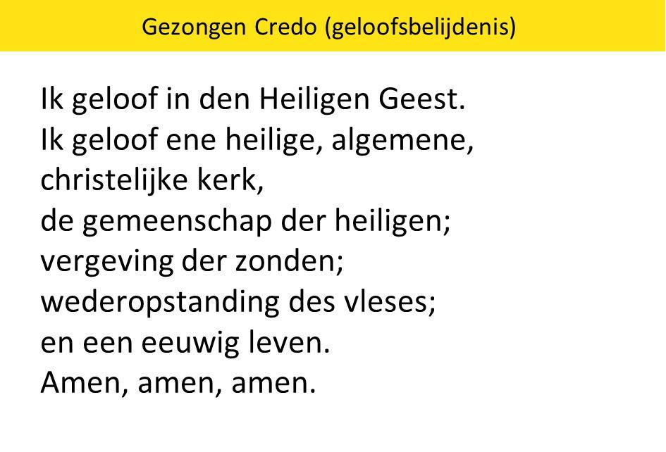 Gezongen Credo (geloofsbelijdenis) Ik geloof in den Heiligen Geest. Ik geloof ene heilige, algemene, christelijke kerk, de gemeenschap der heiligen; v