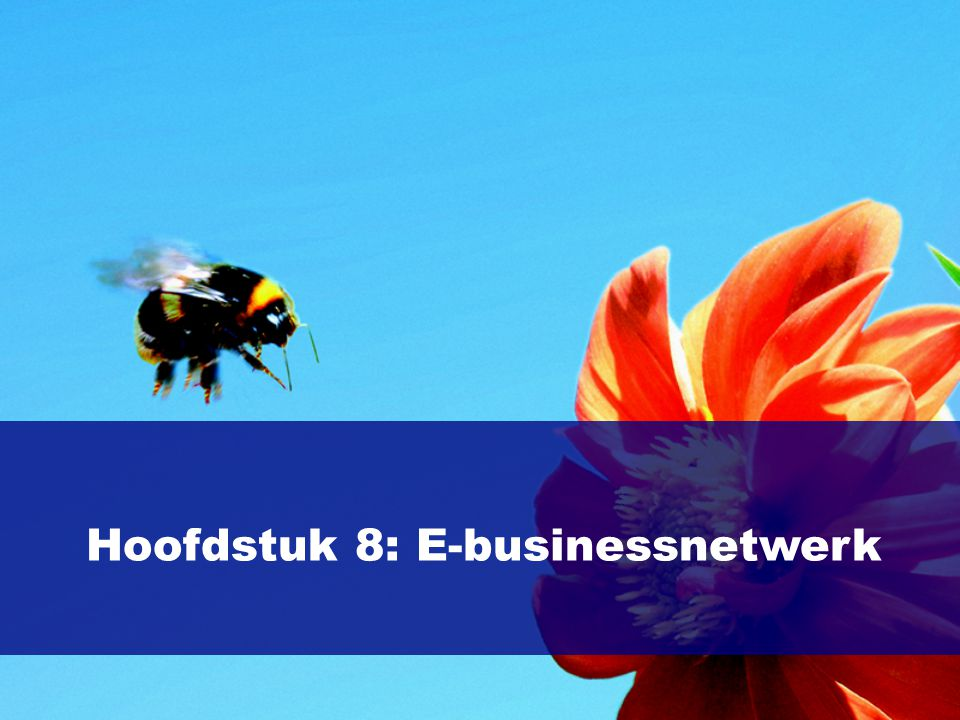 Hoofdstuk 8: E-businessnetwerk