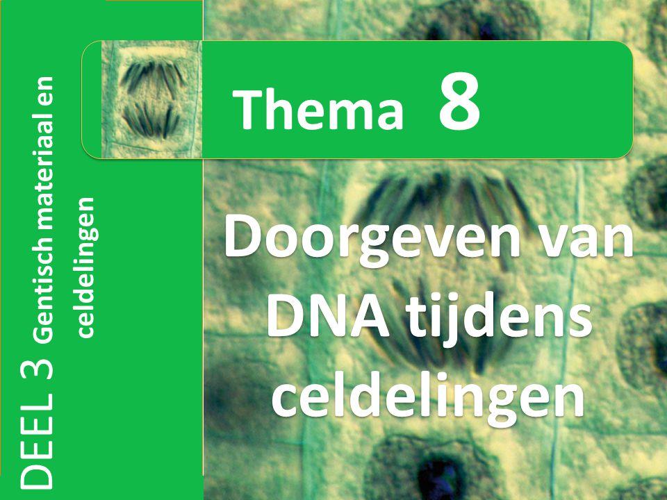 DEEL 3 Gentisch materiaal en celdelingen Doorgeven van DNA tijdens celdelingen Thema 8