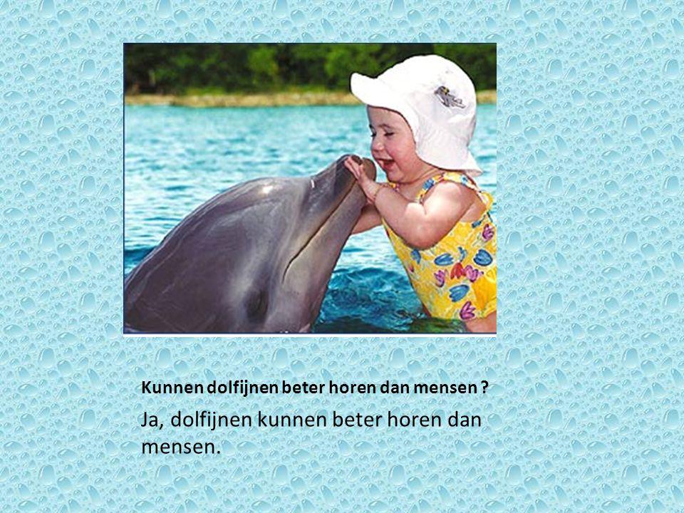 Kunnen dolfijnen beter horen dan mensen ? Ja, dolfijnen kunnen beter horen dan mensen.