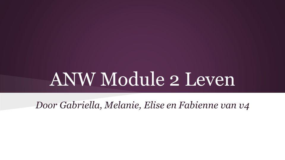 ANW Module 2 Leven Door Gabriella, Melanie, Elise en Fabienne van v4