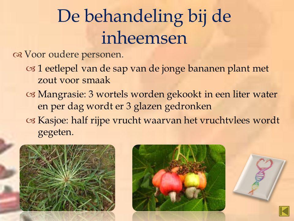   Voor oudere personen.  1 eetlepel van de sap van de jonge bananen plant met zout voor smaak  Mangrasie: 3 wortels worden gekookt in een liter wa