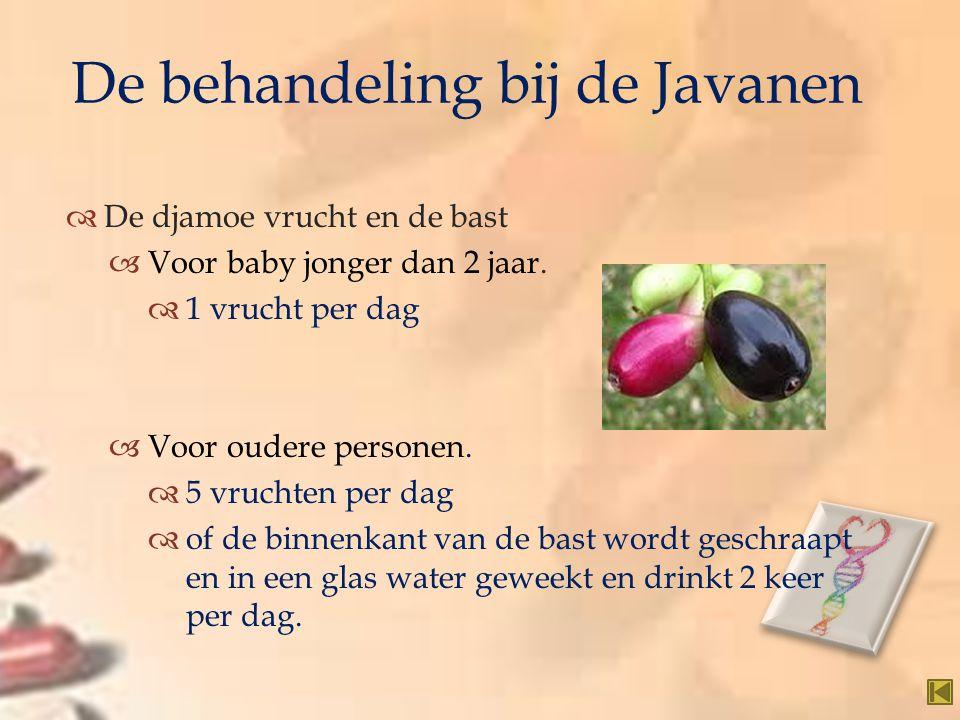   De djamoe vrucht en de bast  Voor baby jonger dan 2 jaar.  1 vrucht per dag  Voor oudere personen.  5 vruchten per dag  of de binnenkant van